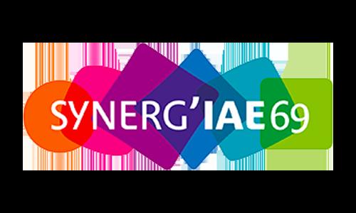 synerg-iae-69-logo
